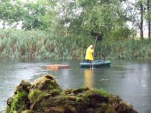 Teich in Mötzlich von Schlingpflanzen befreien