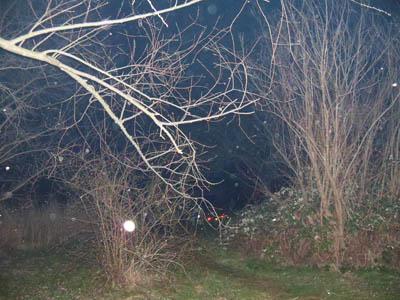 Osterfeuer 2016 in Mötzlich bei Halle an der Saale Bild 7